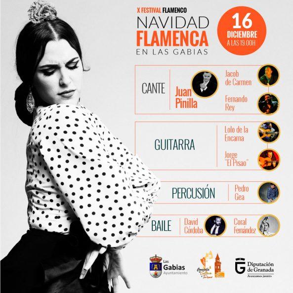 Flamenco Las Gabies