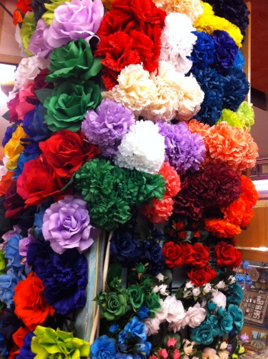 Colourful Carnations in Spain / Andalusia colour in Spring