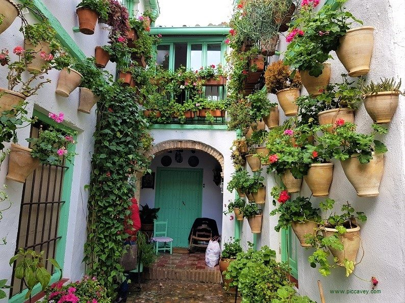 Cordoba Patios Spain by piccavey