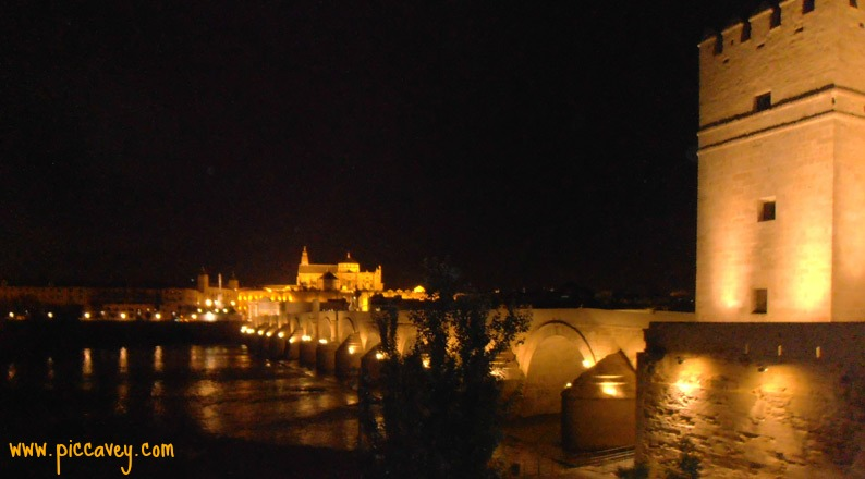 The night view of the city