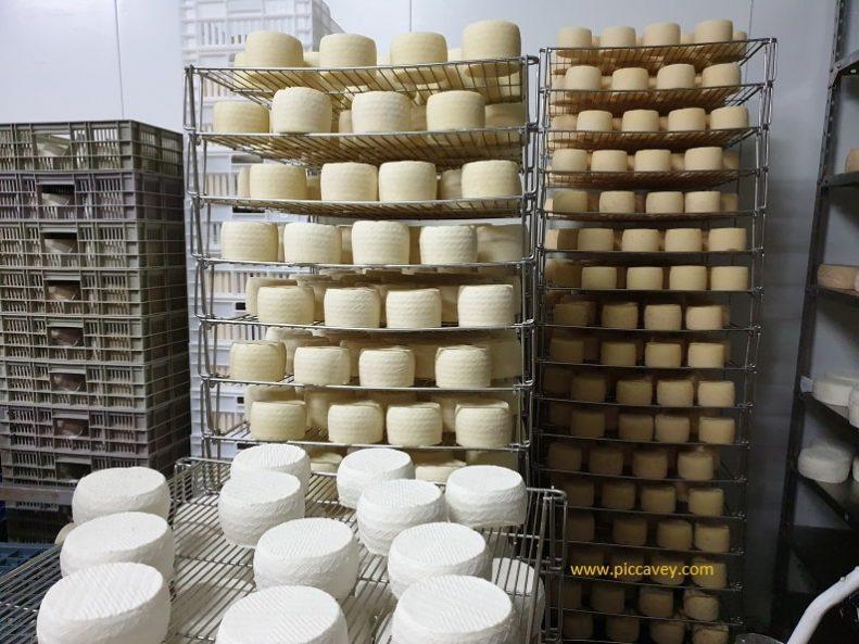 Quesos Sierra Sur Ermita Nueva Cheese in Spain