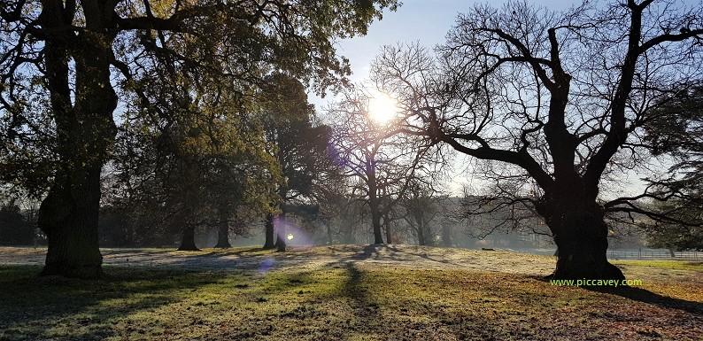 Eastwood Hall grounds Nottinghamshire