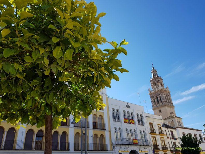 Ecija Sevilla