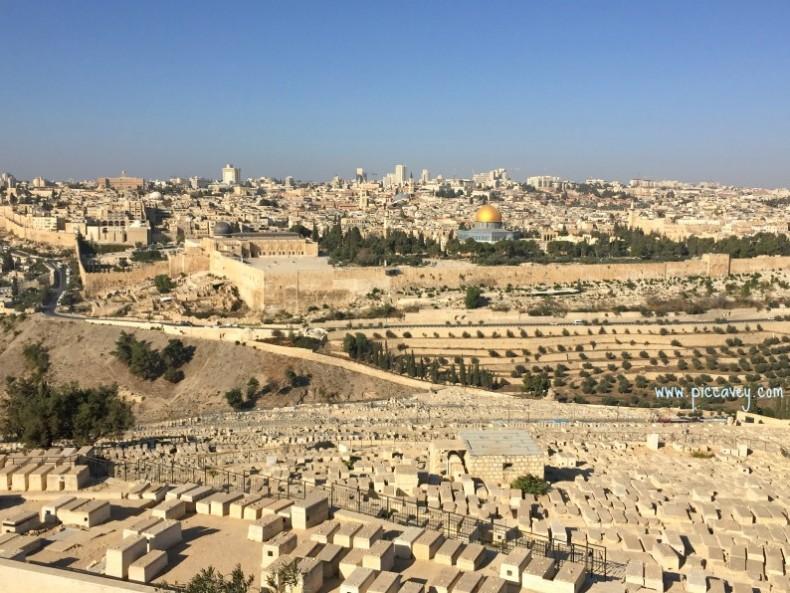 FITUR Travel Blogger Israel