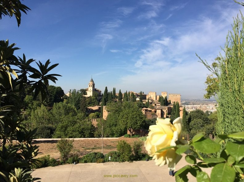 Generalife Summer Alhambra Granada Spain