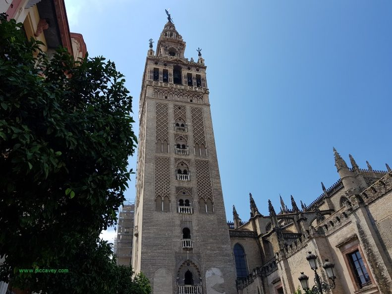 Giralda Seville Cathedral