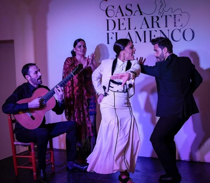 Granada Flamenco Show Spain MICCAI