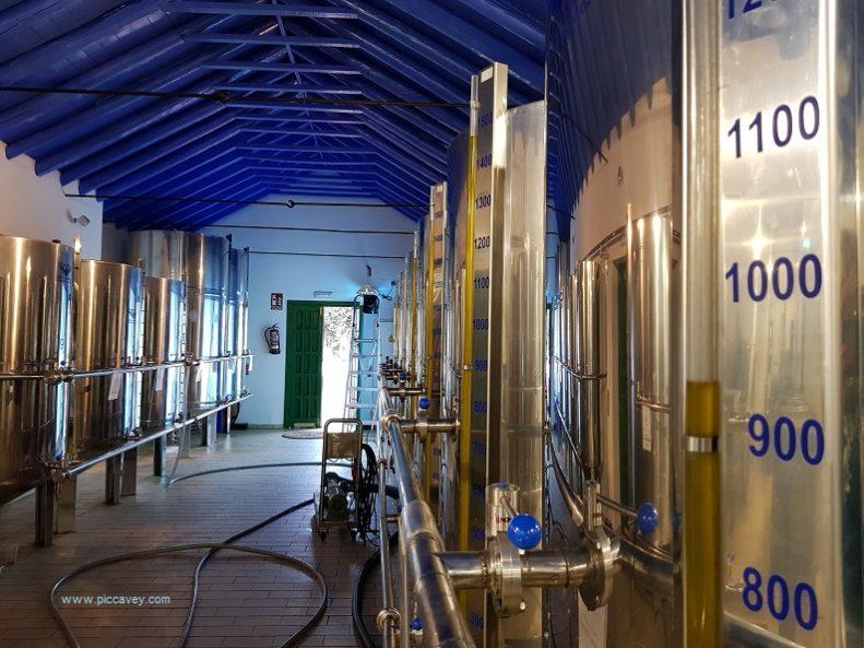 Hacienda Guzman Seville Olive Oil produ