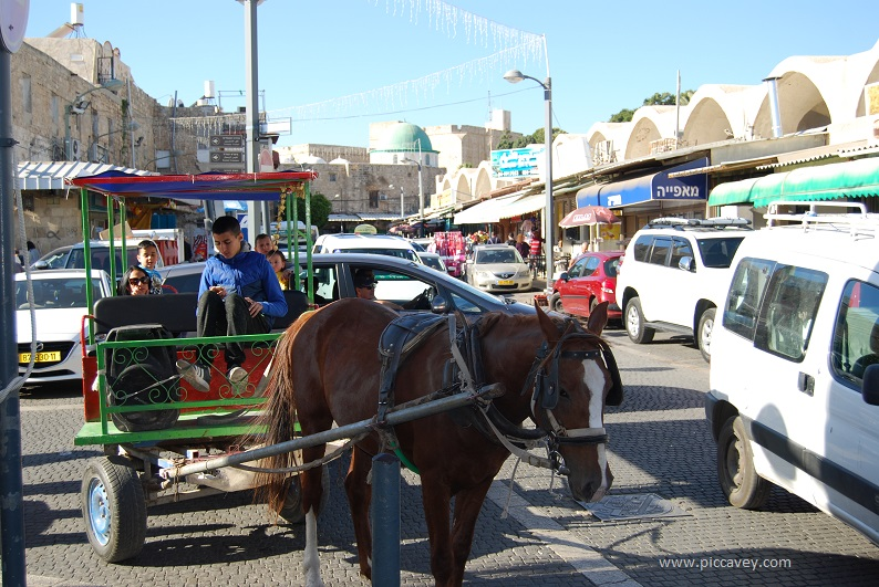 Horse carriage in Akko