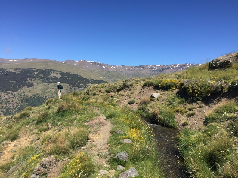 Sierra Nevada Mountains in Andalusia Spain
