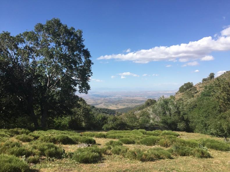 Sierra Nevada Dehesa de Camarate Granada