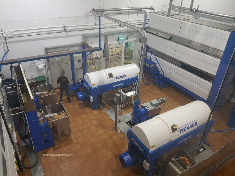 Inside Olive Oil Mill Spain