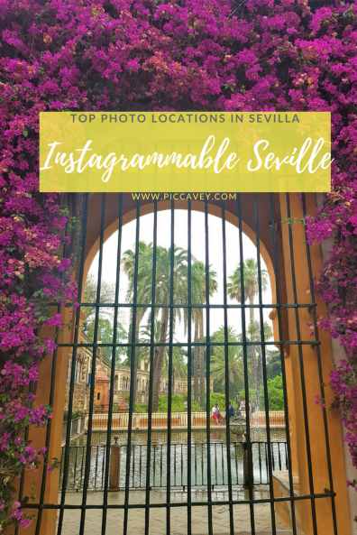Instagrammable Seville