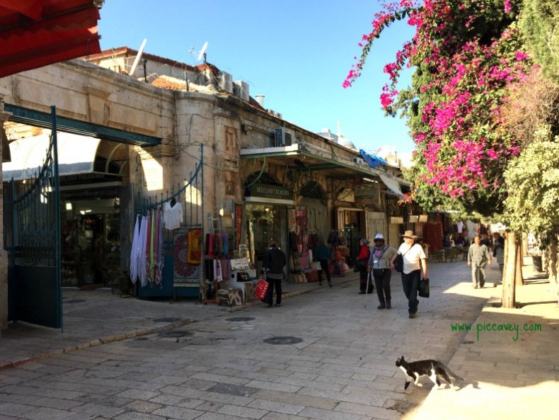 Jerusalem Nov 2016 by piccavey