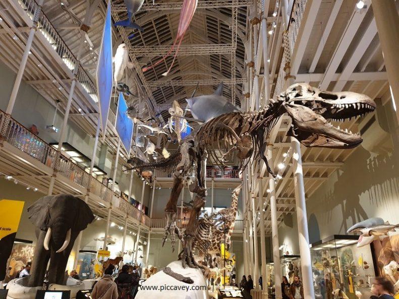 British Staycation Museum of Scotland