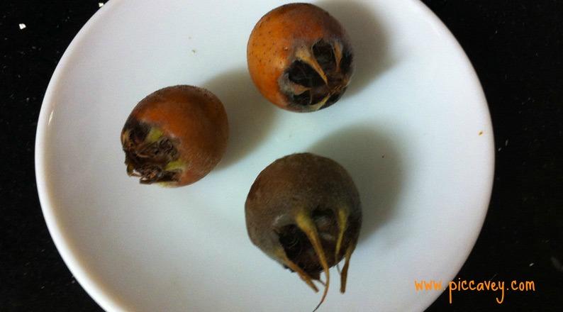 Nispero de Invierno Spanish Fruit