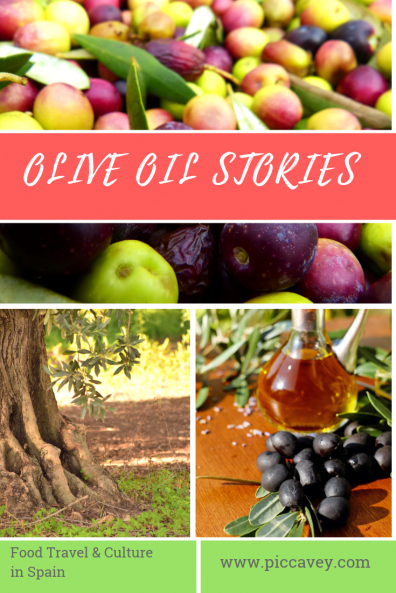 Olive Oil Stories