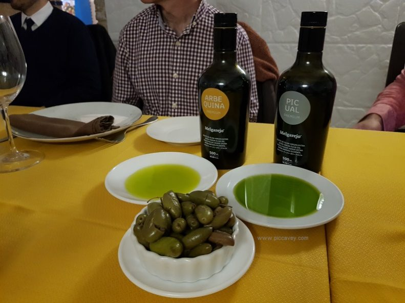 Olives and Olive Oil in Spain