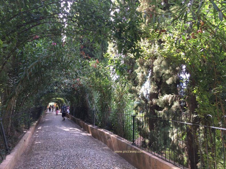 Paseo de las Adelfas Alhambra Gardens