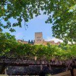 Granada calendar - Best time to visit + Foodie tips & Fiestas