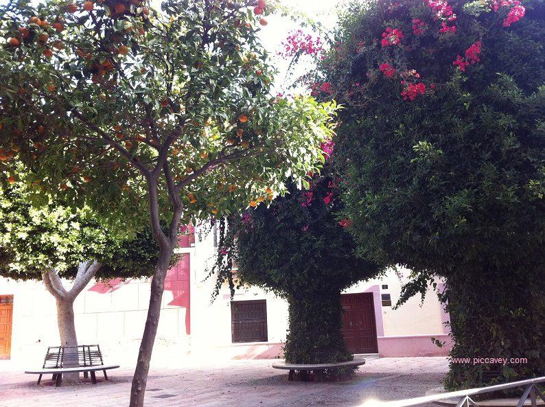 Plaza Campoamor Almeria