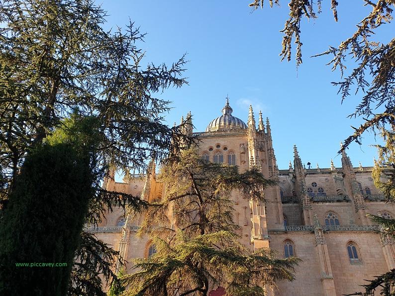Salamanca University Spain