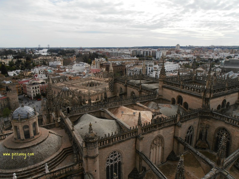 Seville Cathedral from above