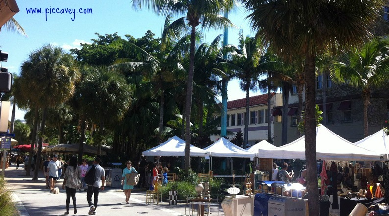 Why Snowbirds call Florida home during the Winter Months