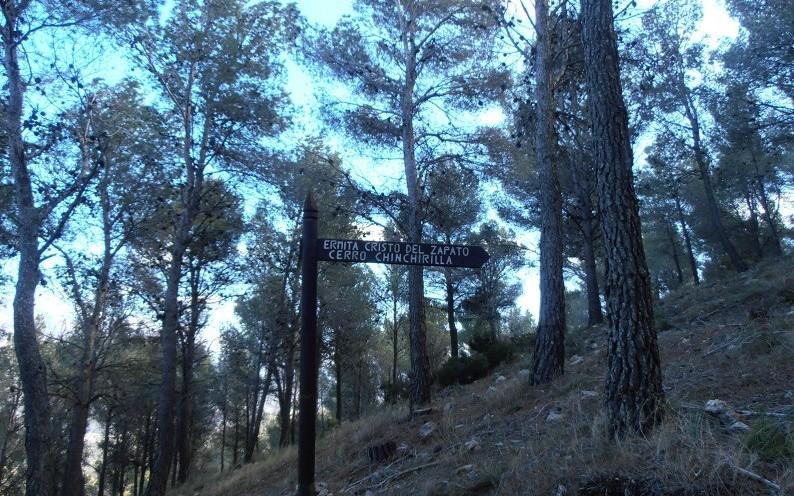 Pinos del Valle Lecrin Valley