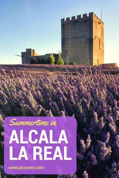 Mota Fortress Alcala la Real