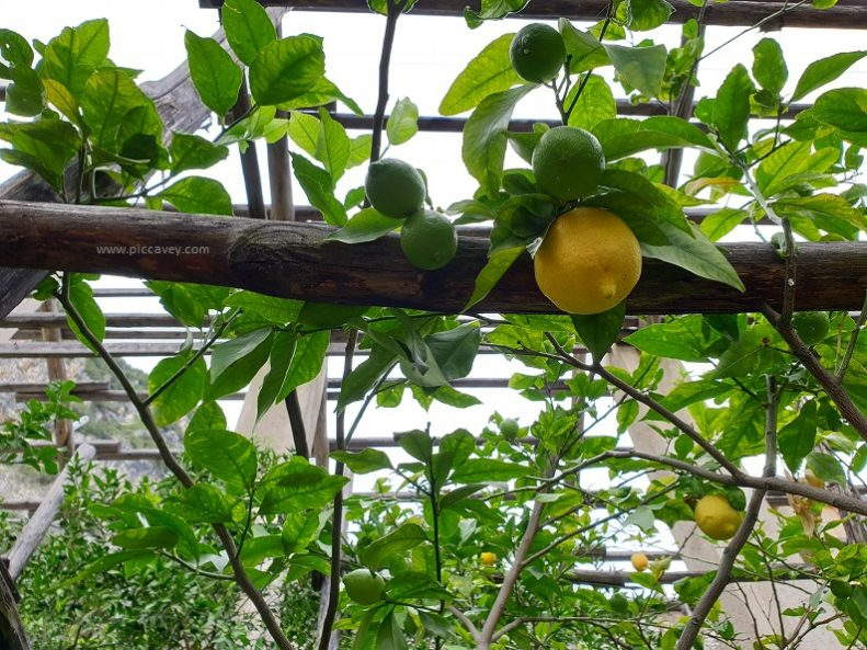 Tingale Lake Garda Lemon House Lombardy