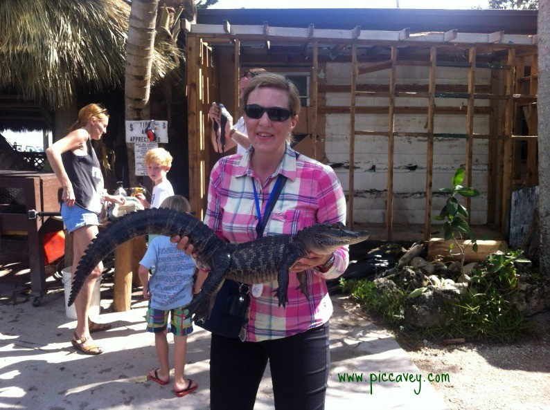 Travel Blogger Everglades Florida