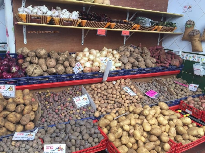 Typical Canary Islands Food Potatoes