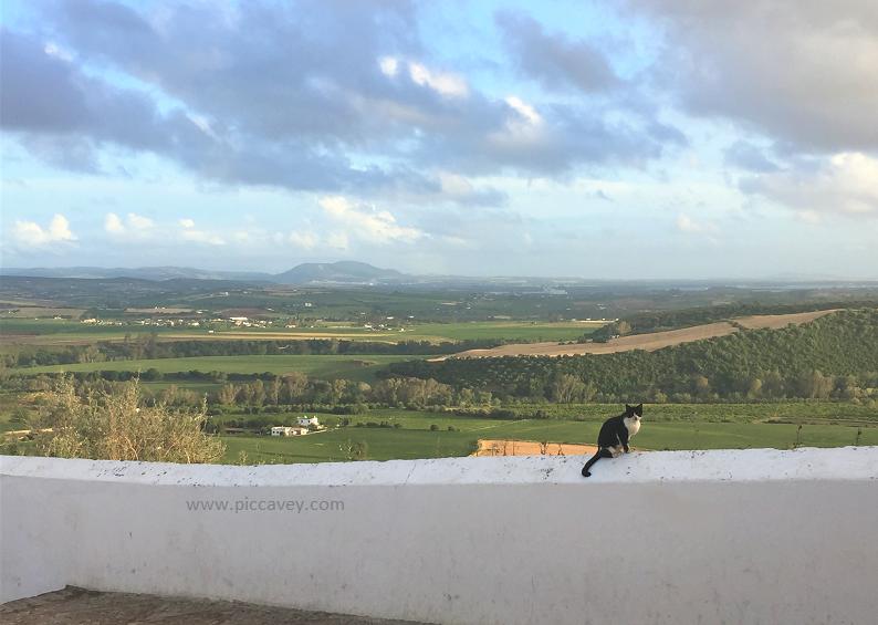 Views from Arcos de la Frontera