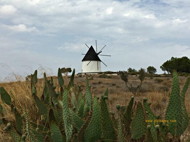 Windmills in the Desert by @piccavey