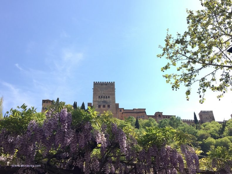 Alhambra Palace Granada by piccavey