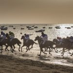 The Best Places for Spanish Horse Racing Traditions
