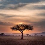 Volunteering In Tanzania + Finding Internships Abroad