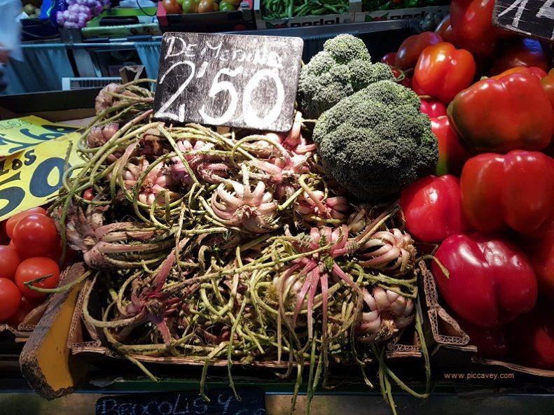 Vegan Food tagarnina thistle